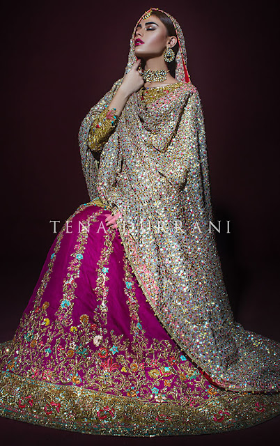 Tena-durrani-winter-bridal-wear-dresses-collection-2017-for-women-2