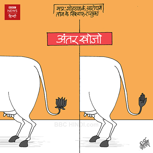 cartoons on politics, indian political cartoon, indian political cartoonist, cartoonist kirtish bhatt, congress cartoon, bjp cartoon, cow cartoon