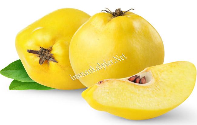 Kışın Mis Kokulu Meyvesi Ayvanın Faydaları
