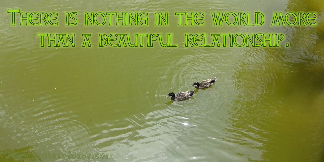 There is nothing in the world more than a beautiful relationship.