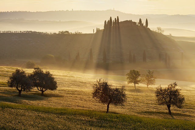 """Power of Light"" by photographer Martin Rak (cz) as seen on linenandlavender.net"