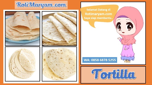 Supplier Kulit Tortilla Kecil, Supplier Kulit Tortilla Kecil, Supplier Kulit Tortilla Kecil, Supplier Kulit Tortilla Kecil, Supplier Kulit Tortilla Kecil,
