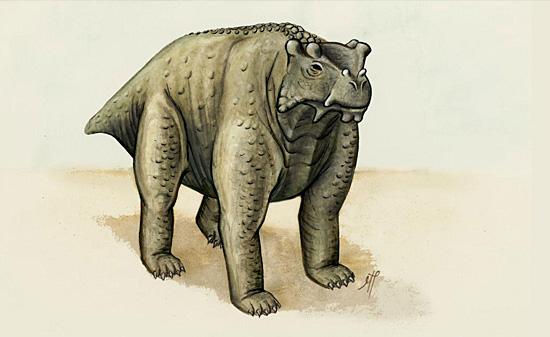 Bunostegos akokanensis - Tataravô dos dinossauros