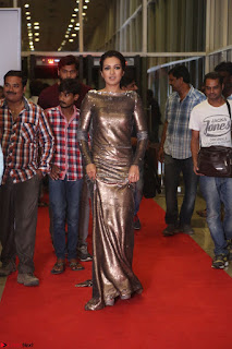 Actress Catherine Tresa in Golden Skin Tight Backless Gown at Gautam Nanda music launchi ~ Exclusive Celebrities Galleries 116.JPG