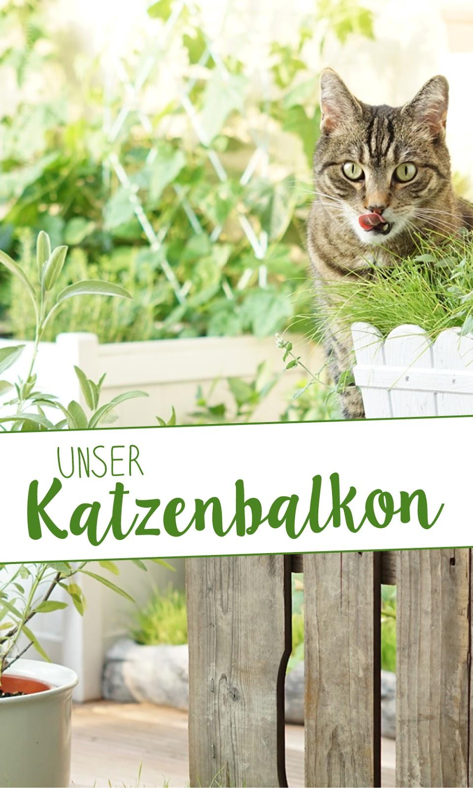 http://www.aentschiesblog.com/2017/07/unser-katzenbalkon-die-pflanzen.html