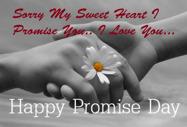 Promise Day Sorry Whatsapp Status DP