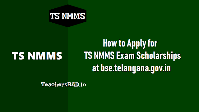 how to apply for ts nmms exam 2019 scholarships at bse.telangana.gov.in,how to fill the telangana nmmss exam 2019, step by step online application procedure for ts nmms exam 2019. required documents, certificates for uploading at ts nmms exam 2019 website