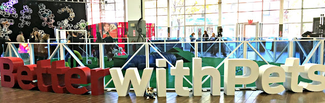 wide angle of Better With Pets block letter sculptures in front of dog agility ring