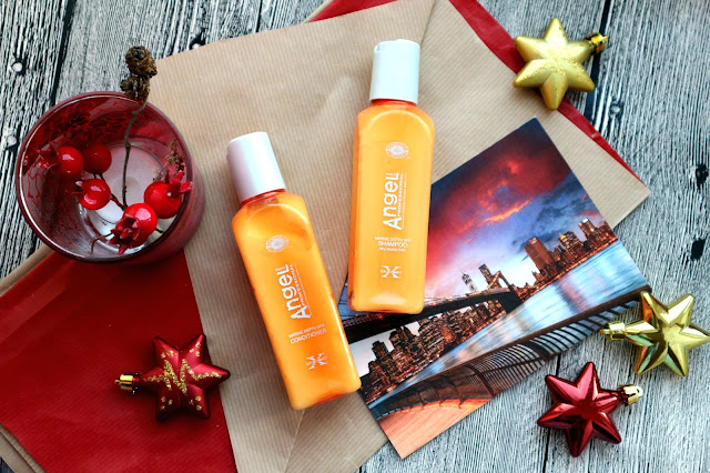 Angel Professional Paris Шампунь для сухих и ослабленных волос и Кондиционер для всех типов волос