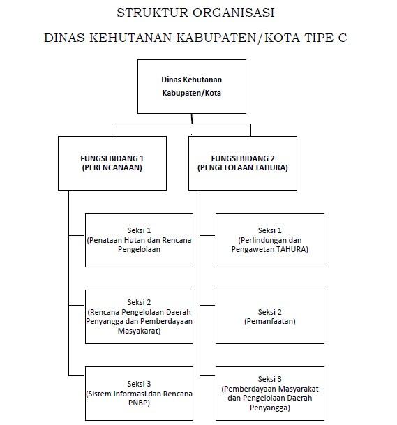 STRUKTUR ORGANISASI DINAS KEHUTANAN KABUPATEN/KOTA TIPE C