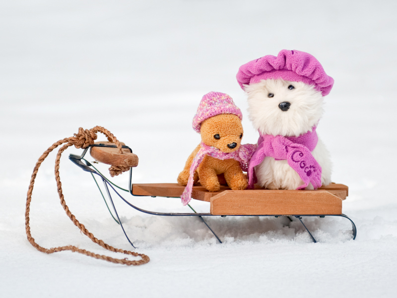 Our snowy day 18 inch doll diaries at our American Girl Doll House. Visit our 18 inch dolls dollhouse!