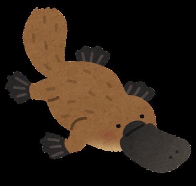 カモノハシのイラスト