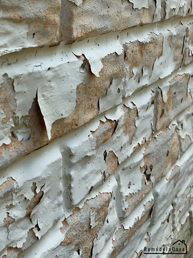 Peeling paint on foundation wall
