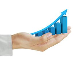 Evolución de los segmentos de negocios estratégicos