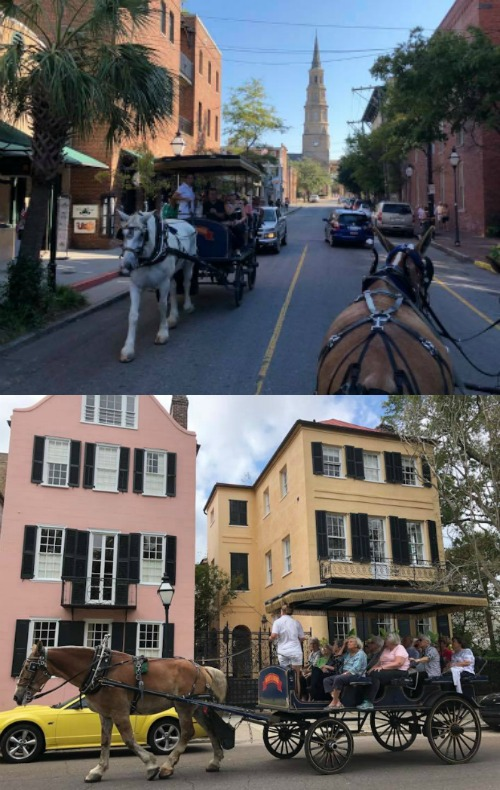 Charleston SC horse drawn carriage ride tour