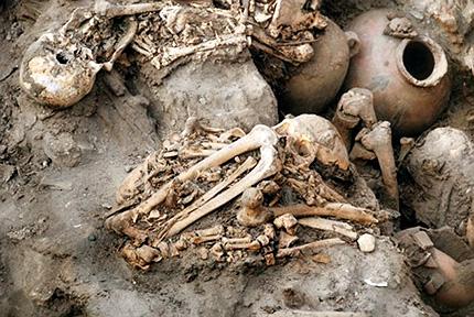 Resultado de imagen de esqueletos bebes
