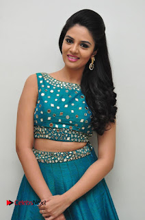 Sree Mukhi Pictures at Gentleman Audio Launch  0098
