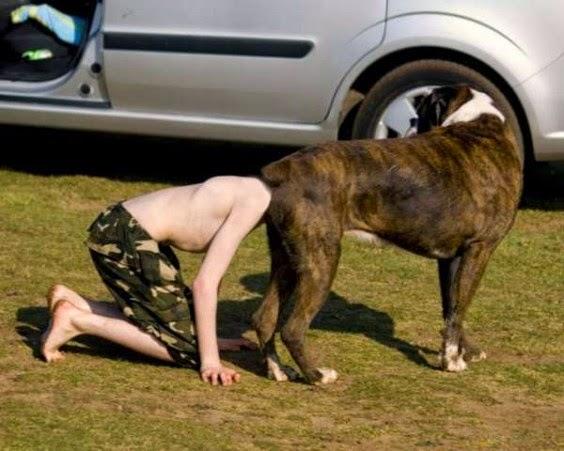 Guys Head In A Dogs Ass