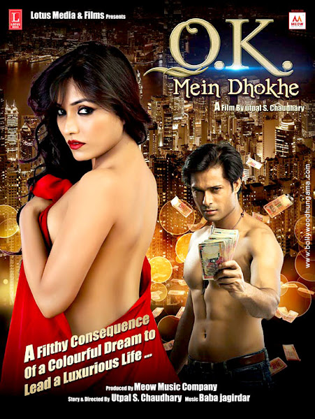 Ok Mein Dhokhe (2016) Movie Poster No. 1