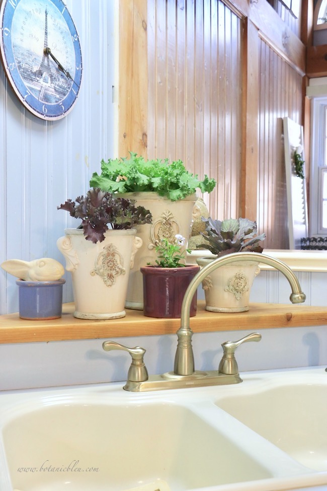french country kitchen decorated with ornamental kale in french style urns for fall