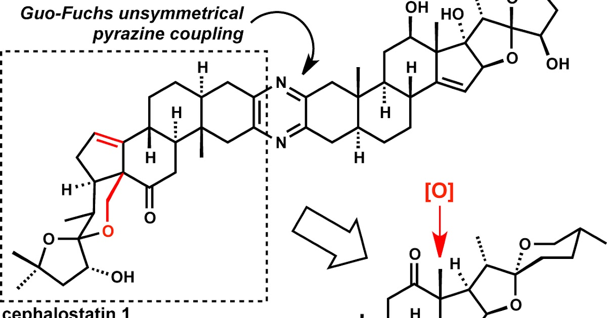 modern steroid science: Weisheng Tian's Synthesis of