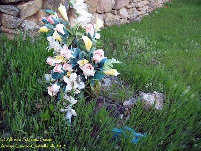 arroyo-cerezo-cementerio-tumba