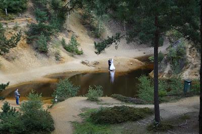 purpurowe jeziorko sesja ślubna