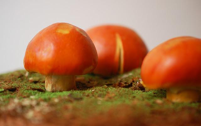 images of the Caesar's mushroom photo by naoko takagi