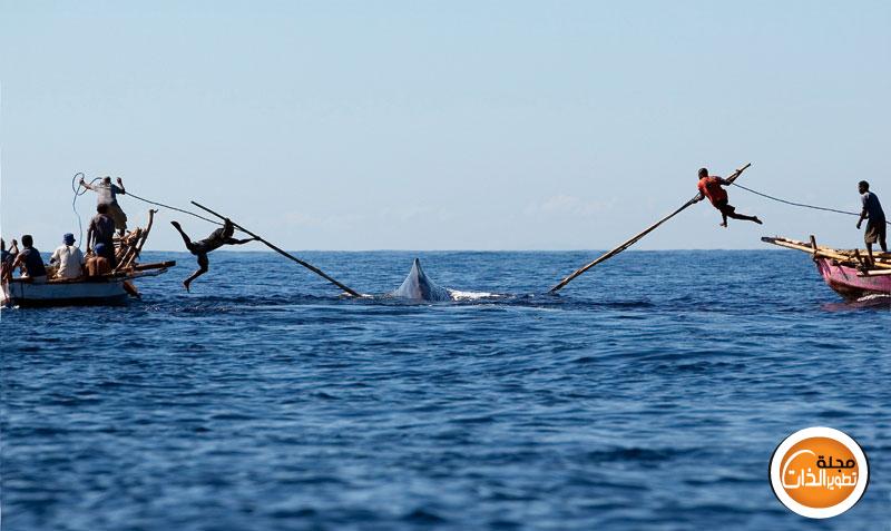 صور طريقة صيد غريبة image-43044.jpg