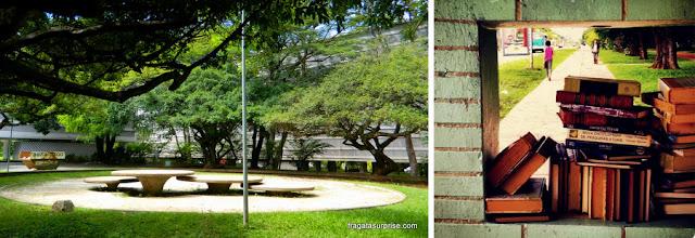 Brasília: Jardim da 308 Sul e a doação de livros nos pontos de ônibus da Asa Norte