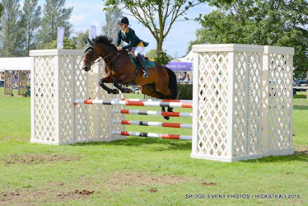 Kathy Hollick Blee : a selection of show jumping memories