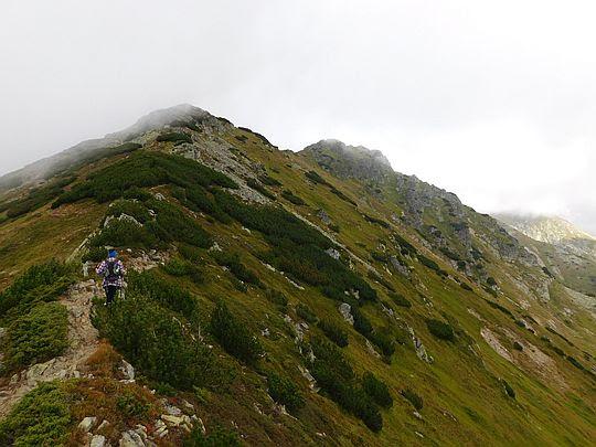 W drodze na szczyt Pośredniej Magury.