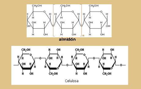 Química 3 Clasificación De Carbohidratos