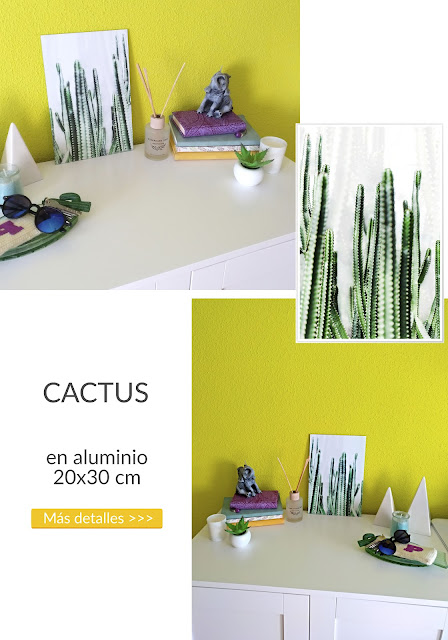cuadro de cactus