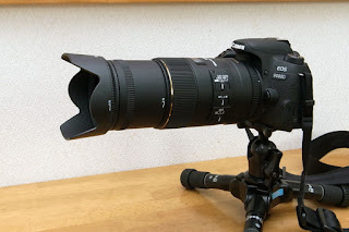 SIGMA MACRO 105mm F2.8 EX DG OS HSM + HA680-01 + LH680-04