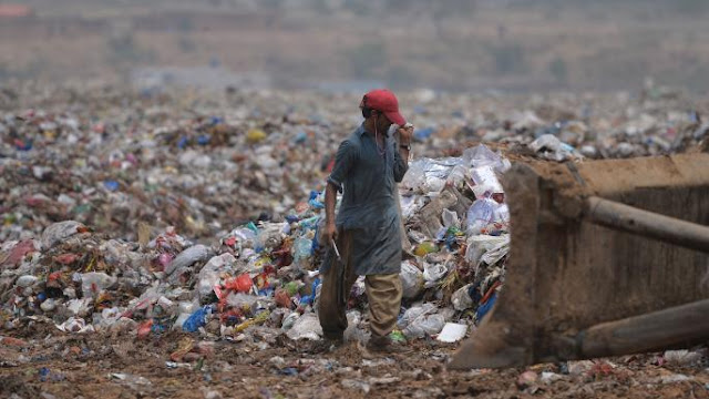 Discovered in Pakistan | Plastic-eating Fungus Answer to World's Waste Crisis