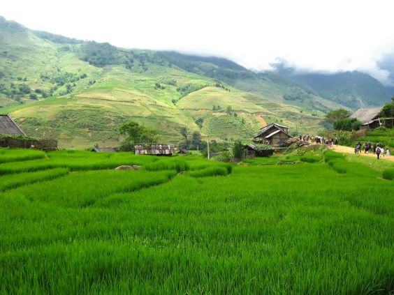 Ta Van - A pure gem of Lao Cai