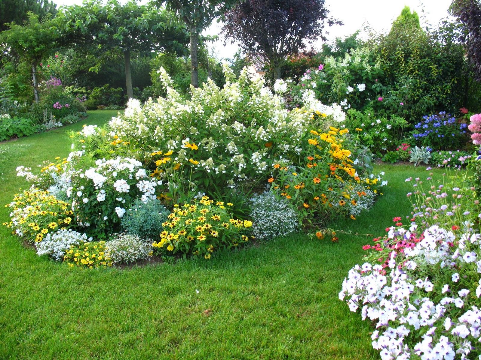 Roses du jardin ch neland for Entretien jardin 77