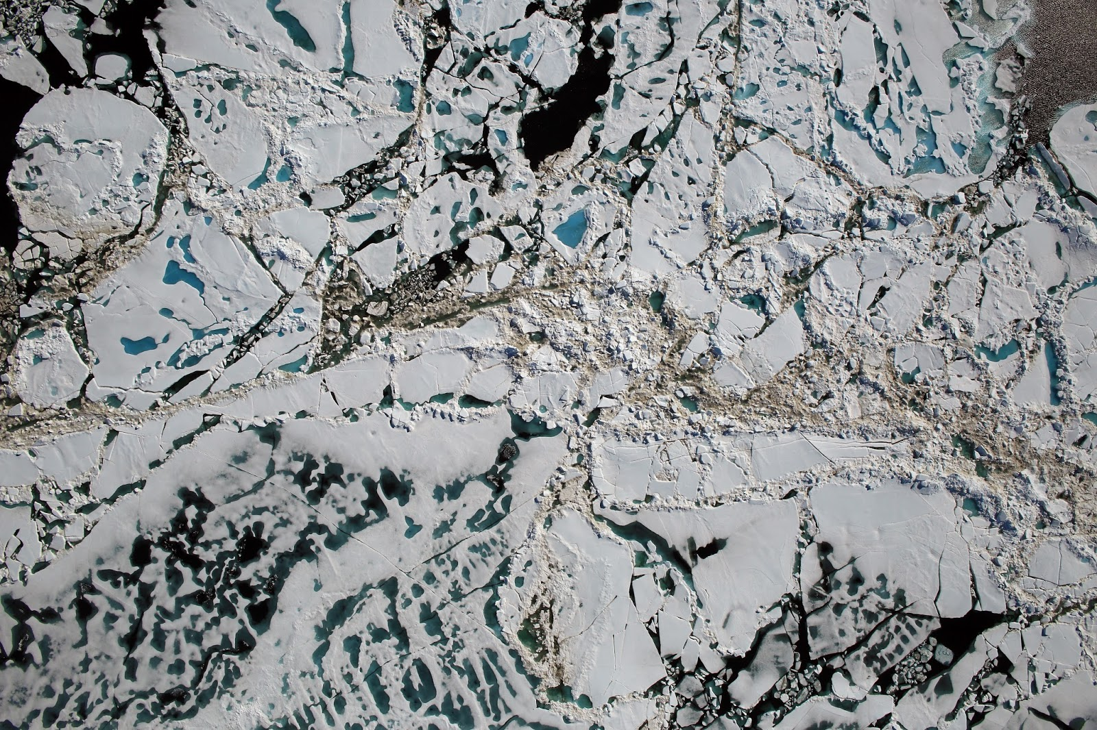 Orbiter space news 2016 07 17 image above chunks of sea ice melt ponds and open water are all seen in this image captured at an altitude of 1500 feet by the nasas digital mapping publicscrutiny Images