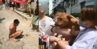 Homem estupra cachorrinha ao vivo pela internet, internautas descobrem o lugar e fazem o pior com ele