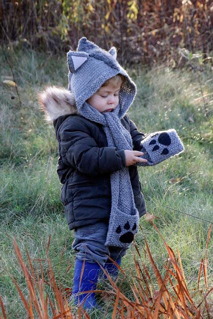 Mały, wełniany wilk