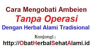 Cara mengobati ambeien tanpa operasi-herbal alami tradisional
