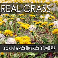 3dsMax高精度112個草叢花草3D模型下載