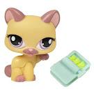 Littlest Pet Shop Singles Cat (#1468) Pet