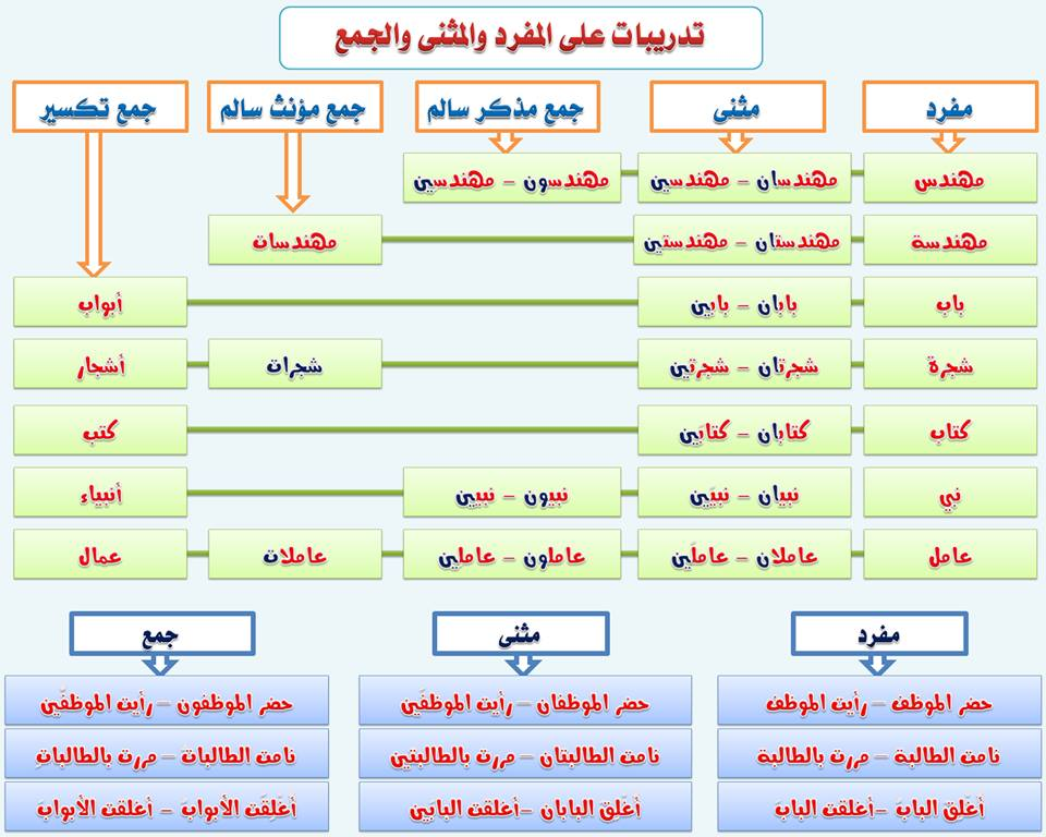 الجامع الشامل قواعد اللغة العربية