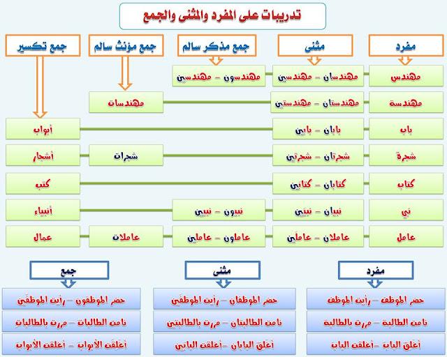 """انفراد.... كل قواعد اللغة العربية لطلاب """"ابتدائي - اعدادي - ثانوي"""" في صورة لوحات مبسطة مع الشرح والتدريبات 11"""