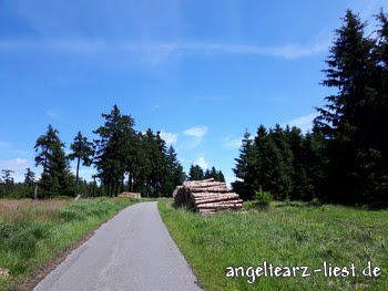 Bocksberg in Hahnenklee, Harz