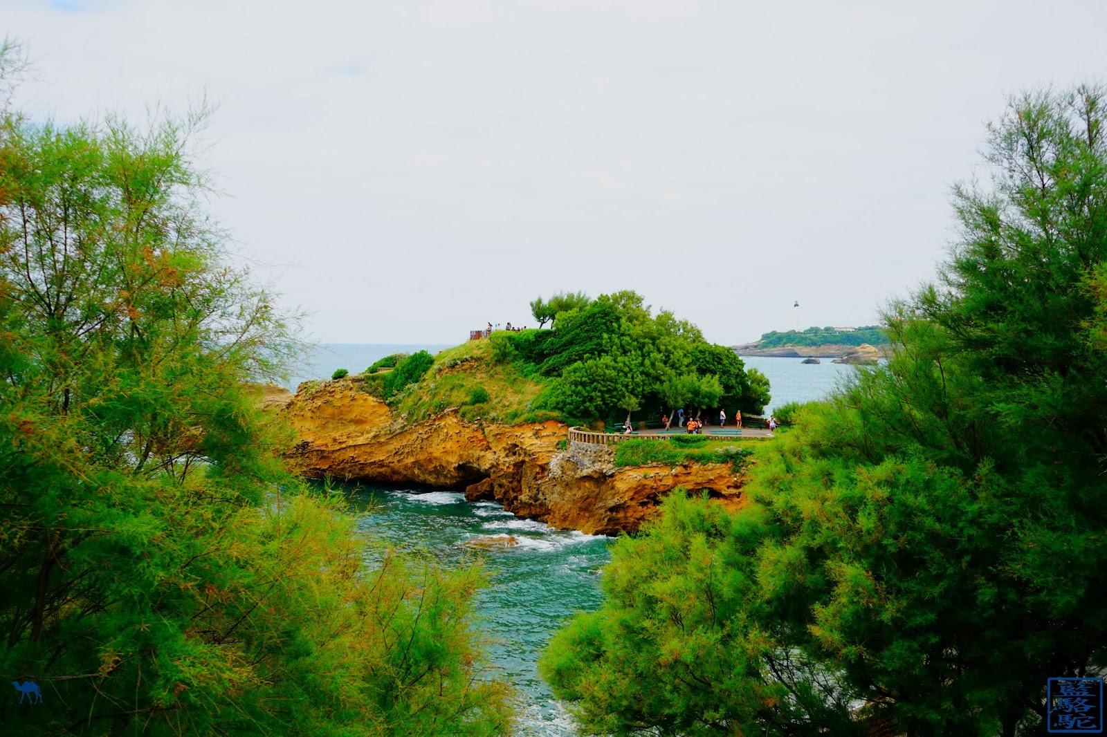 Le Chameau Bleu - Biarritz - rocher du Basta- Cote basque