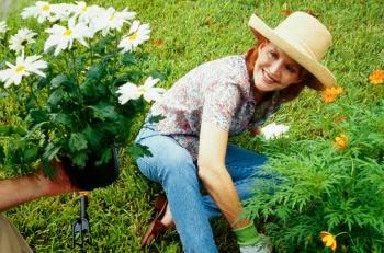 jardineria para alergicos