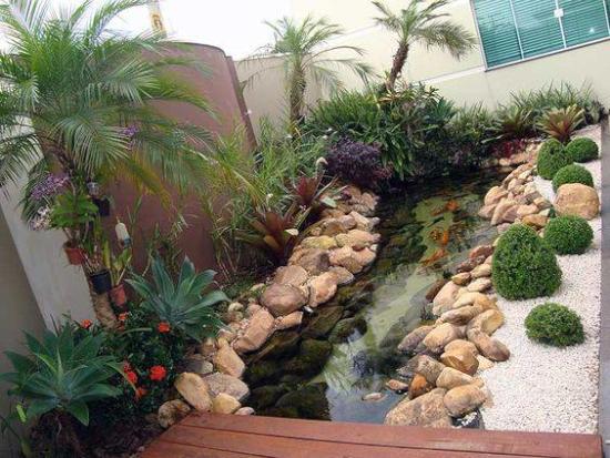 desain kolam ikan di belakang rumah